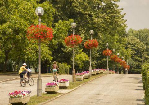 Zsigmondy sétány, park és Harka-kút